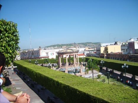 Arboles en la piedad desde la terraza del sal n el - Arboles terraza ...