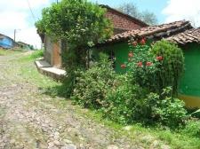 En Los Guanumos 6