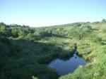 La Piedad. Una tinaja, entre Puente Nigromante y presita (asolvada) Cinco de Oros